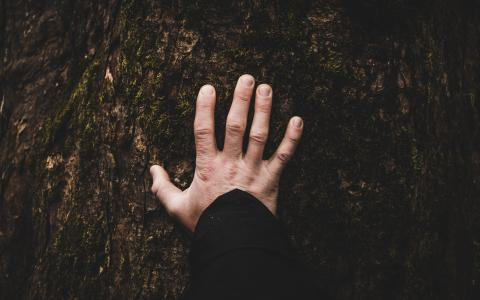 Image of a hand placed on the earth